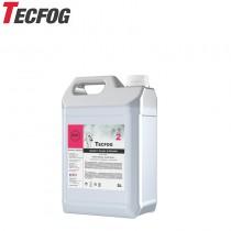 TECFOG 2